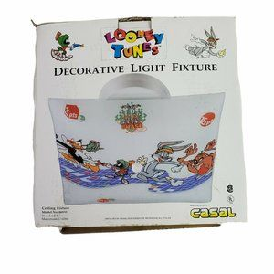 Looney Tunes 1995 Hyper Chase Frosted Glass Ceiling Light Cover by Casal Vintage